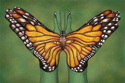 Monarch Butterfly Hand Painting | Guido Daniele