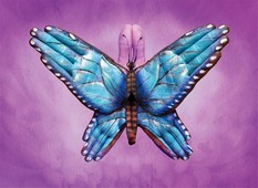 Blue Butterfly Hand Painting | Guido Daniele