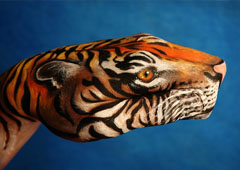 Tiger Hand Painting | Guido Daniele