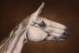 White Horse on brown Hand Painting | Guido Daniele