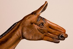 Brown Horse on white Hand Painting | Guido Daniele
