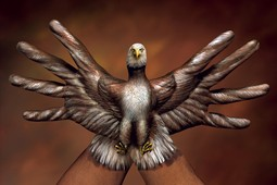 Bald Eagle two hands Hand Painting | Guido Daniele