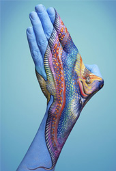 Tropical Fish Hand Painting | Guido Daniele