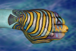 Tropical Fish 2 Hand Painting | Guido Daniele