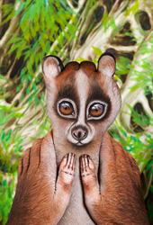Lemur Loris