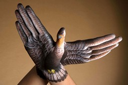 Falcon two hands Hand Painting | Guido Daniele
