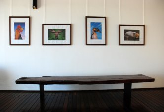 Royal Beach Gallery - Nosy Be
