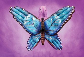 Blu Butterfly - Ph. Garrigosa