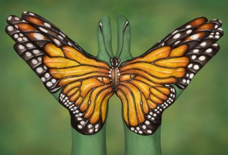Monarch Buttefly - Ph. Guido Daniele