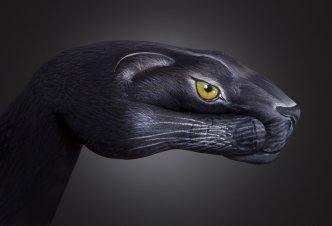 Panther - Ph. Guido Daniele
