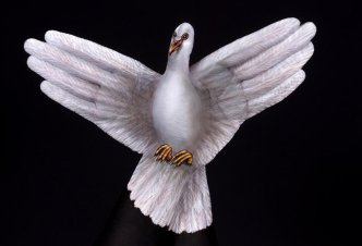 White Dove 2 hands - Ph. Guido Daniele