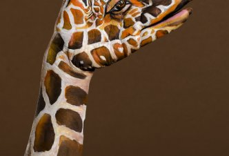 Giraffe on brown - Ph. M.J. Daniele